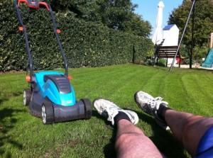 Gesunder Rasen nach Rasenmähen