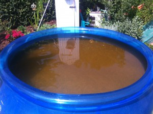 Braunes Wasser